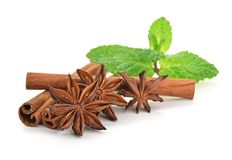 Sticks of cinnamon with mint and anise Stock Image