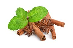 Sticks of cinnamon with mint and anise Royalty Free Stock Images