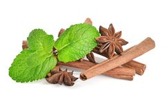 Sticks of cinnamon with mint and anise Stock Photography