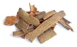 Sticks of cinnamon on white background Royalty Free Stock Photos