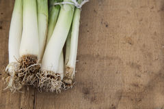 Sticks of leek royalty free stock photos