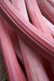 Sticks Of Rhubarb Stock Image
