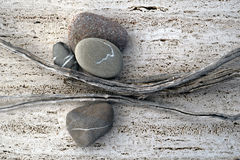 Sticks And Stones. Still life photograph of weathered sticks and river stones Royalty Free Stock Photos