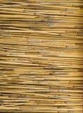 Sticks of Straw Stock Photos