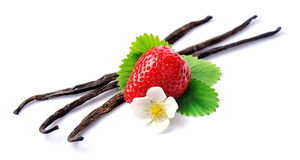 Sticks of vanilla and strawberry Royalty Free Stock Photography