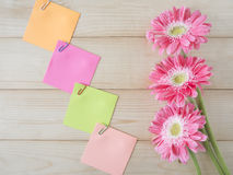 Sticky note and pink flower 11 Stock Images