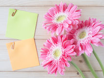 Sticky note and pink flower 12 Royalty Free Stock Photo