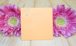 Sticky note and pink flower 10 Stock Images