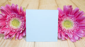 Sticky note and pink flower 15 Stock Photography
