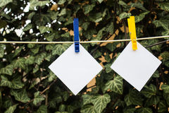 Sticky notes on clothespin Royalty Free Stock Photo