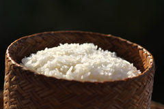 Sticky rice. In the rice box Stock Images