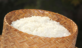 Sticky rice. In the rice box Royalty Free Stock Image