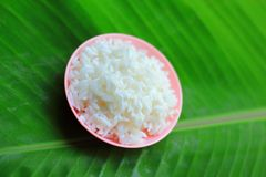 Sticky rice Royalty Free Stock Photography