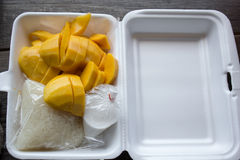 Sticky rice and mango snack box. Sticky rice and mango with coconut milk snack box thai style food royalty free stock photo