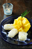 Sticky Rice Mango Thai Dessert Stock Photo