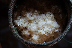 Sticky rice in a wicker royalty free stock photos