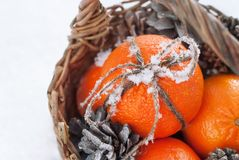 Sticky Snow on a Bow from Cord, Christmas Oranges Stock Photo
