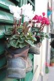 Stiefel mit Blumen Lizenzfreie Stockbilder
