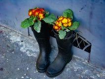 Stiefel mit Blumen Stockbild