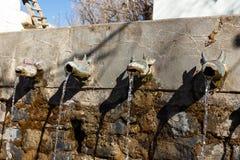 Stier geht Rohre des Wand-Brunnens voran Stockbilder