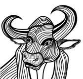 Stier-Kopfvektor-Tierillustration für T-Shirt. Lizenzfreies Stockfoto