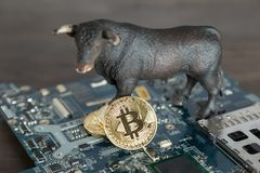 Stier met Bitcoin Cryptocurrency op Computermotherboard Stier M royalty-vrije stock foto
