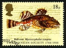 Stier-Niederlage-Fisch-BRITISCHE Briefmarke Lizenzfreie Stockfotografie