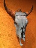 Stier-Scull auf der Wand Stockfotografie