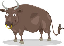 Stier-Vieh-Karikaturillustration Stockfotografie
