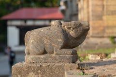 Stierenbeeldhouwwerk bij de Pashupatinath-tempel stock afbeelding