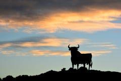 Stierenteken in Spanje Royalty-vrije Stock Foto's