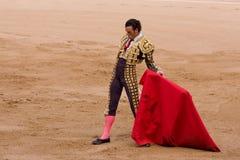 Stierenvechten Royalty-vrije Stock Afbeeldingen
