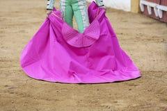 Stierenvechter met capote of de kaap stock afbeelding