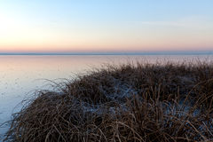 Stiffened coast. Held down the first ice Royalty Free Stock Photos