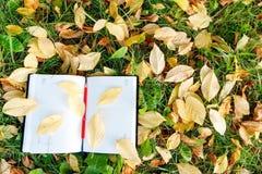 Stift, der auf dem Notizbuch mit Herbstlaub sitzt Lizenzfreie Stockfotos
