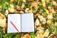 Stift, der auf dem Notizbuch mit Herbstlaub sitzt Lizenzfreie Stockfotografie
