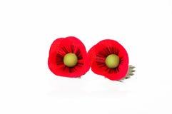 Stift för blomma för två tygvallmo på vit bakgrund Royaltyfria Bilder