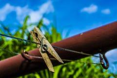 Stift i solig dag mot blå himmel fotografering för bildbyråer