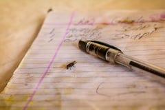 Stift und eine Fliege auf einem Papier Stockbild