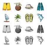 Stiga ombord med en segla, en palmträd på kusten, häftklammermatare, en vit haj Surfa fastställda samlingssymboler i tecknad film royaltyfri illustrationer