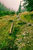 Stigande i Transylvanias dimmiga berg Arkivbilder
