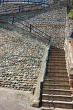 Stigande stenmoment på en kullerstenvägg Fotografering för Bildbyråer