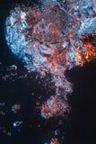 stigning för luftbubblor royaltyfria foton