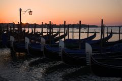 Stigning i den San Marco fjärden italy venice royaltyfri foto