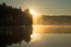 Stigning i morgondimma på skogsjön Morgon arkivfoto