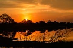 Stigning Sun Royaltyfri Fotografi