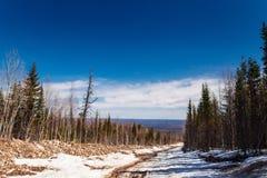 Stigning till berget Konzhak, nordliga Urals Ryssland fotografering för bildbyråer
