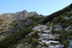 Stigning till det Rysy maximumet 2503 M, höga Tatras arkivbilder