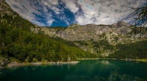 Stigning till och med grön pinjeskog till det alpina berget Hochtor i nationalparken Gesause, Österrike royaltyfria bilder