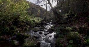 Stijgende beweging van dichtbij de cursus van de rivier tot een algemene mening van de achtergrond stock footage